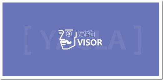 Как выглядят настройки веб-визора для Интернет-магазина